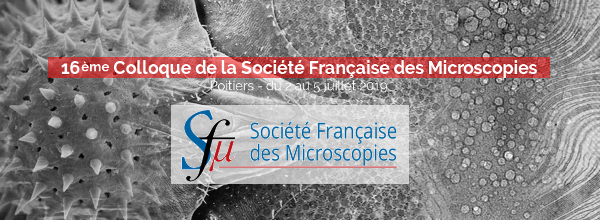 Colloque de la Sfµ 2019